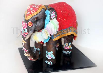 Indian Elephant 2017