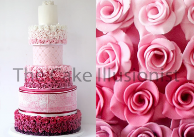 Ombre Roses