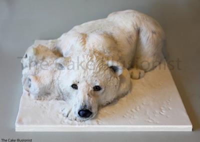 Polar and Cub