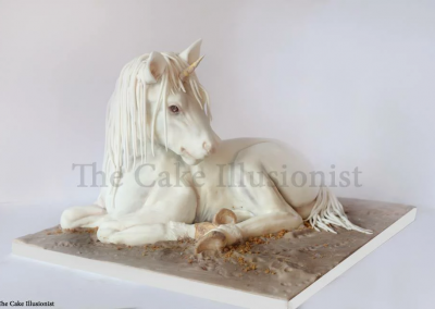 Unicorn Cake - All cake. Serves 25