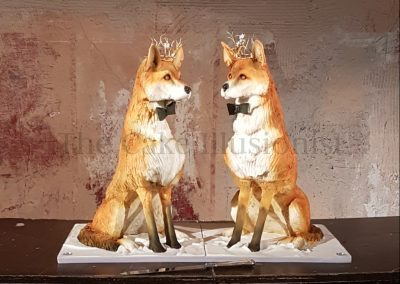 Elegant Foxes