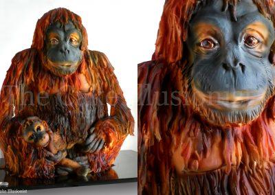 Orangutan Mama and Baby